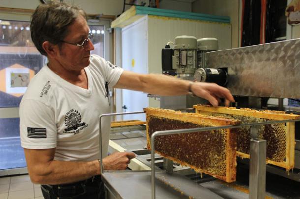 apiculteur ille et vilaine